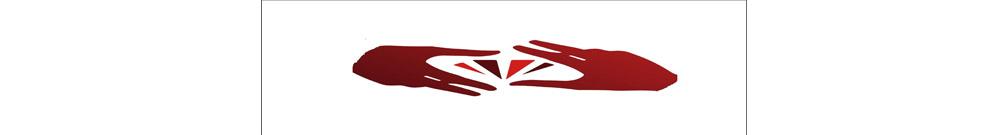 施明光學 Logo